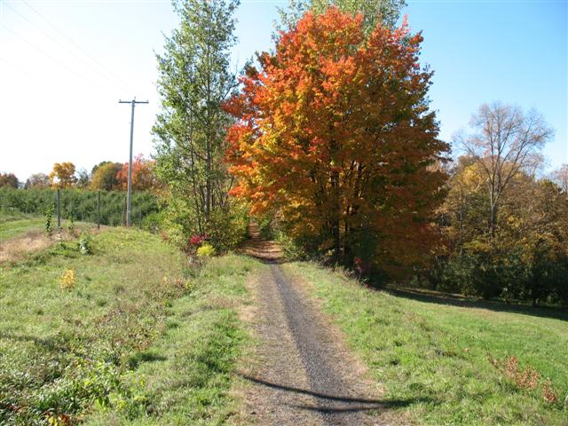 Wallkill Valley Rail Trail