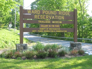 Ward Pound Ridge
